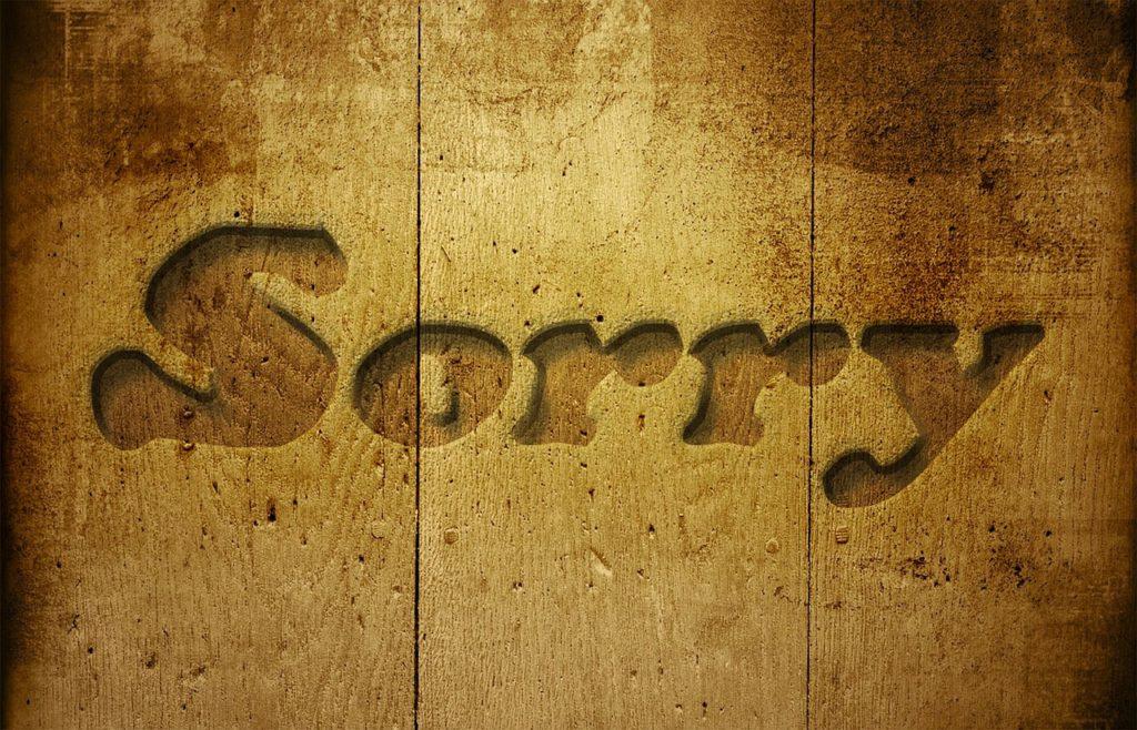 Thriller Book Review Sorry By Zoran Drvenkar