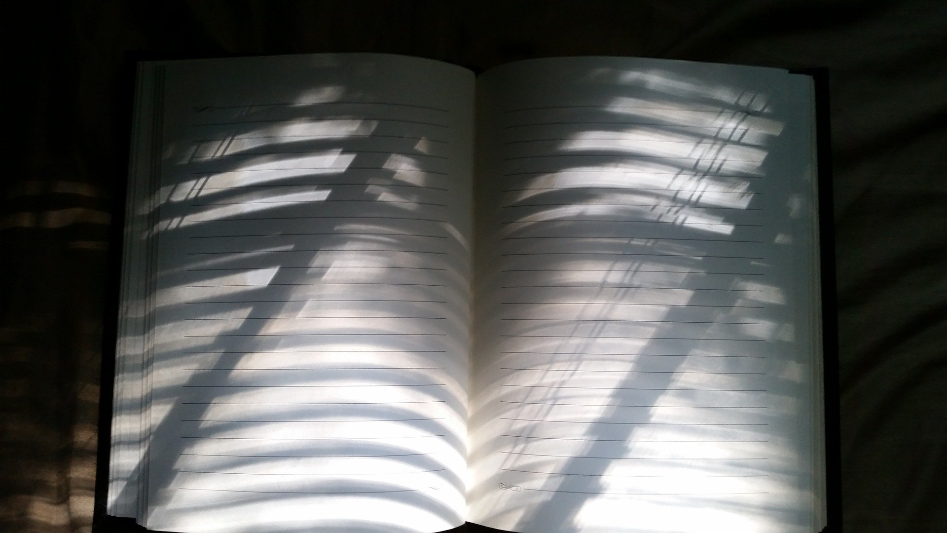 Notes from the Other Side Literary Crime Short Fiction By Harshit Chhabra