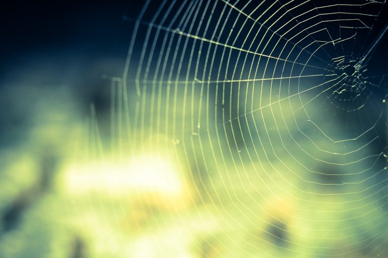 Spider Thriller Flash Fiction By Adrienne Unger
