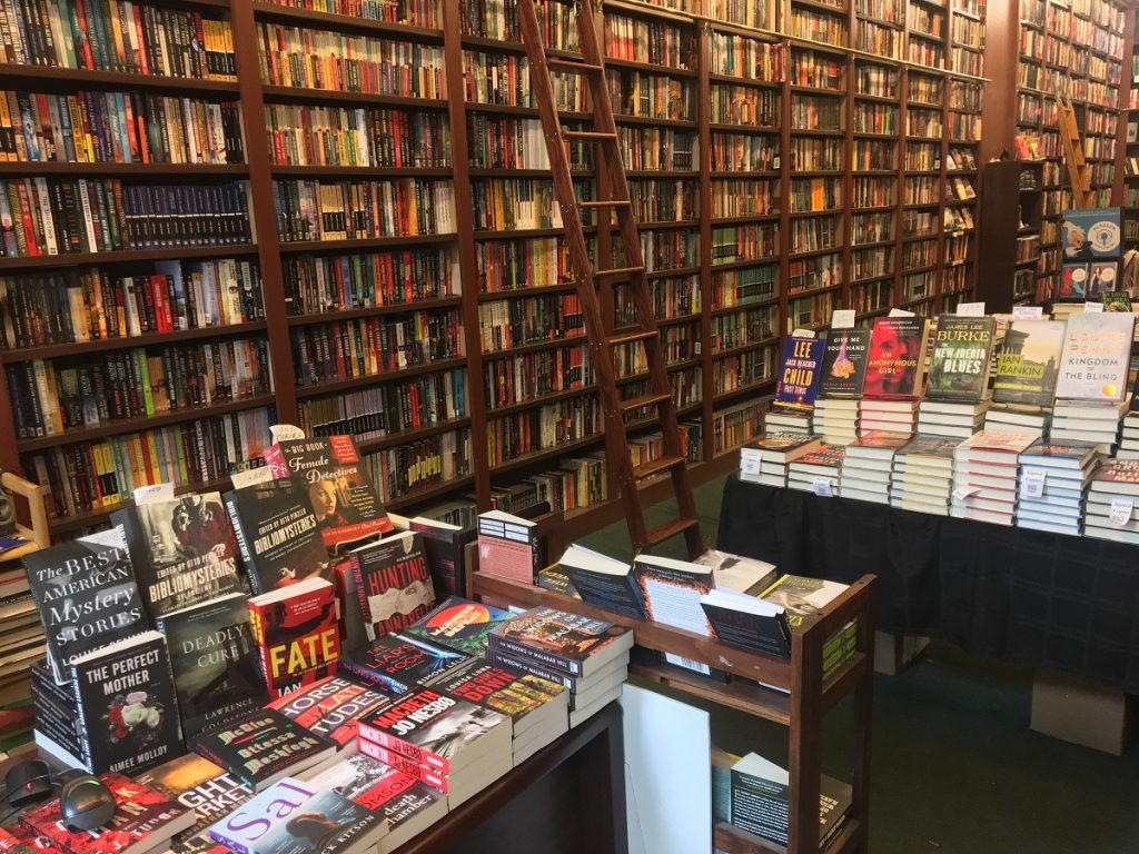 Coziness and Comfort at The Mysterious Bookshop An Essay 2